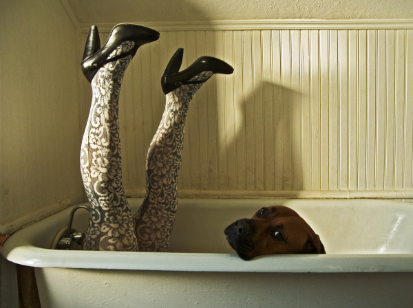 Legs Dog Bath